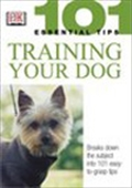 Training Your Dog: 101 Essential Tips