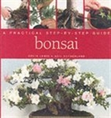 A Practical Step-By-Step Guide-Bonsai