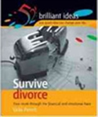 Survive Divorce - Your Route Through The Financial And Emotional Maze