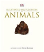 Illustrated Encyclopedia Of Animals