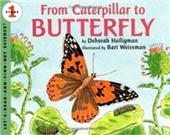 From Caterpillar To Butterfly (Lets-Read-And-Find-Out Science, Stage 1)