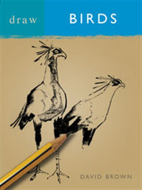 Draw Books : Draw Birds