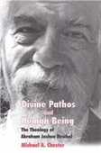 Divine Pathos And Human Being: The Theology Of Abraham Joshua Heschel