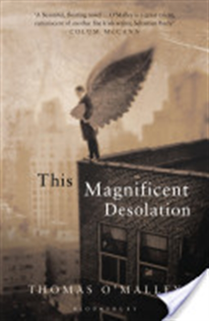 The Magnificent Desolation