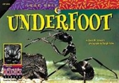 Underfoot (Look Once, Look Again)