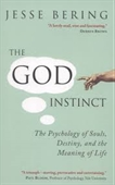 The God Instinct : The Psychology of Souls, Destiny, And The Meaning of Life