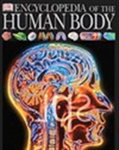 Encyclopedia Of Human Body