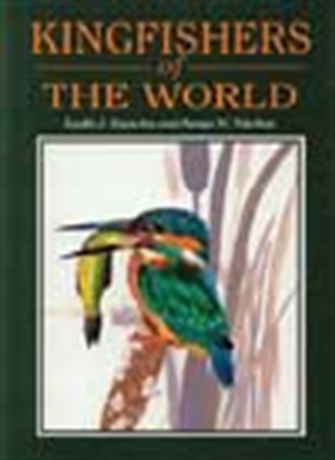 Kingfisher Of The World